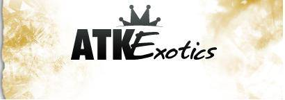 Up to 30% off ATK Exotics Discount